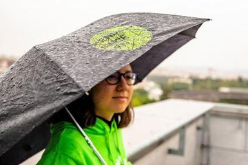 Picture of Deštník