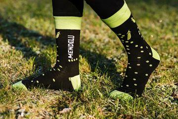 Obrázek Ponožky MENDELU